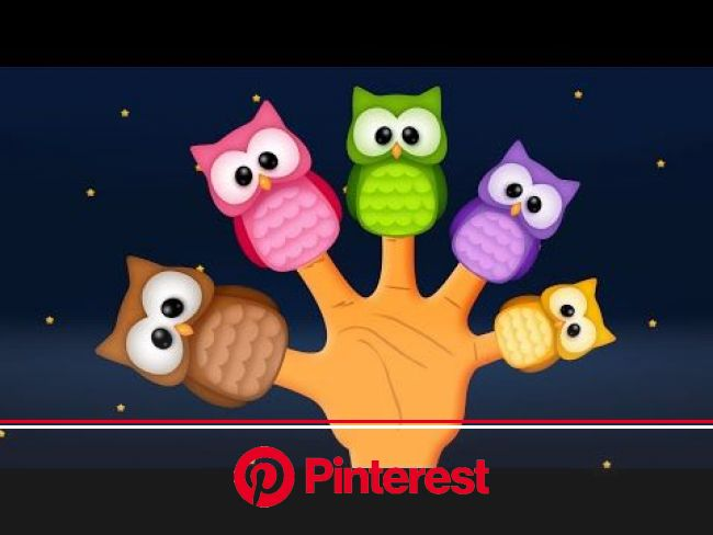 The Finger Family Owl Family Nursery Rhyme | Owl Finger Family Songs | Finger family song, Finger family rhymes, Family songs